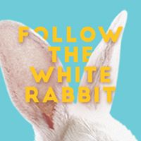 Hype City: Follow the White Rabbit czyli Wielkanocna Sobota 2.0