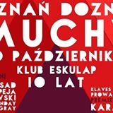Poznań Doznań: Muchy i Goście