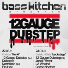 Bass Kitchen pres. 12 GAUGE DUBSTEP [NL] (Chronos rec.)