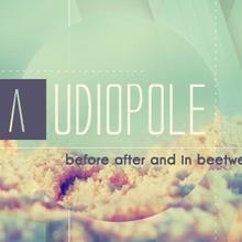 Audiopole 2015