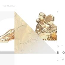 Smolna: Stephan Bodzin live