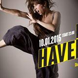 DANIELA HAVERBECK