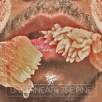 Toro Y Moi – Underneath The Pine
