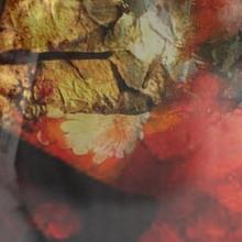 Camoufia – Tree EP