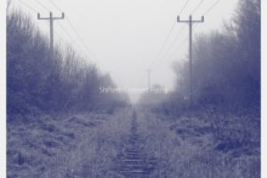Shifted – Crossed Paths