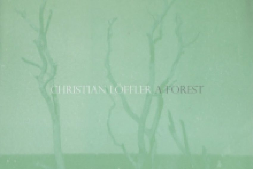 Christian Löffler – A Forest