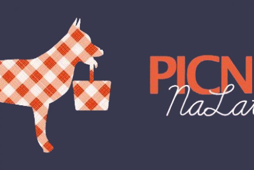 Pets Recordings zaprasza na Picnik