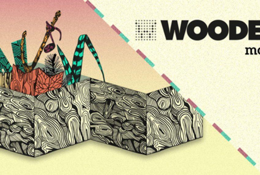 Wooded wraca w 2015 z Festiwalem!