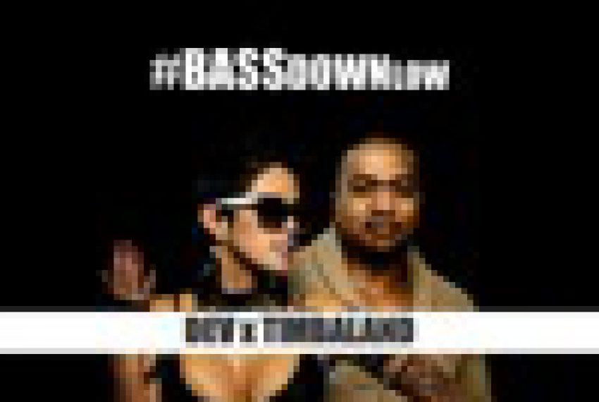 DJ PP- Bass down Low (Dev x Timbaland) FREE DOWNLOAD