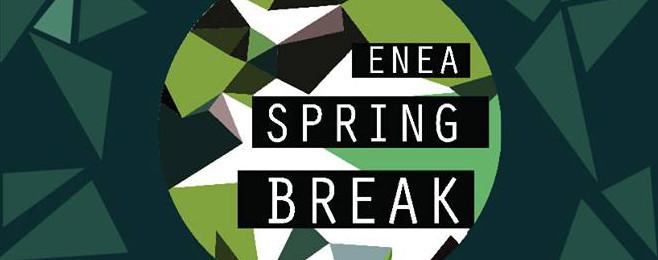 Kolejnych 12 artystów dołącza do Enea Spring Break 2017