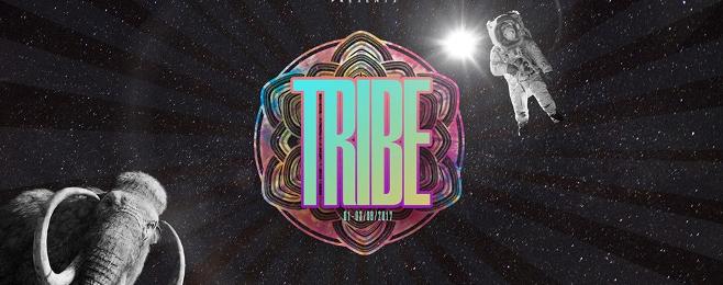 LAS Tribe czyli kameralny rave w lesie