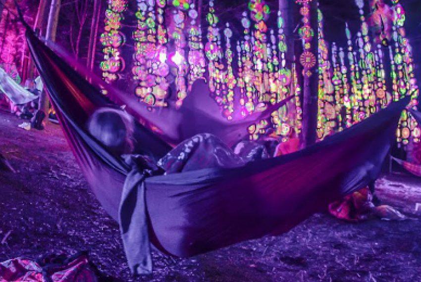'Psytrance wyrósł z pięknych idei' – wywiad z organizatorami GOADUPA FESTIVAL
