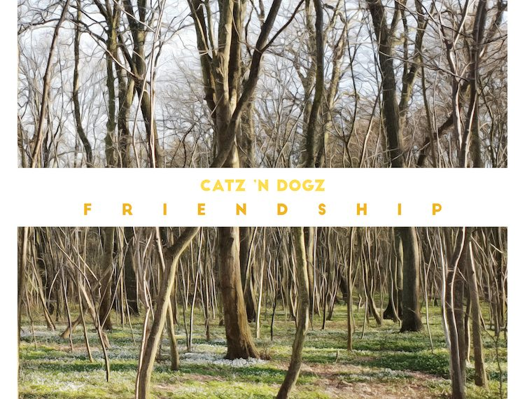 Słuchamy najnowszej płyty Catz n Dogz – Friendship
