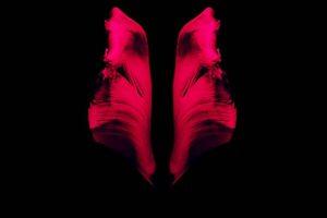 <span>Francesca Lombardo</span> - Life Of Leaf