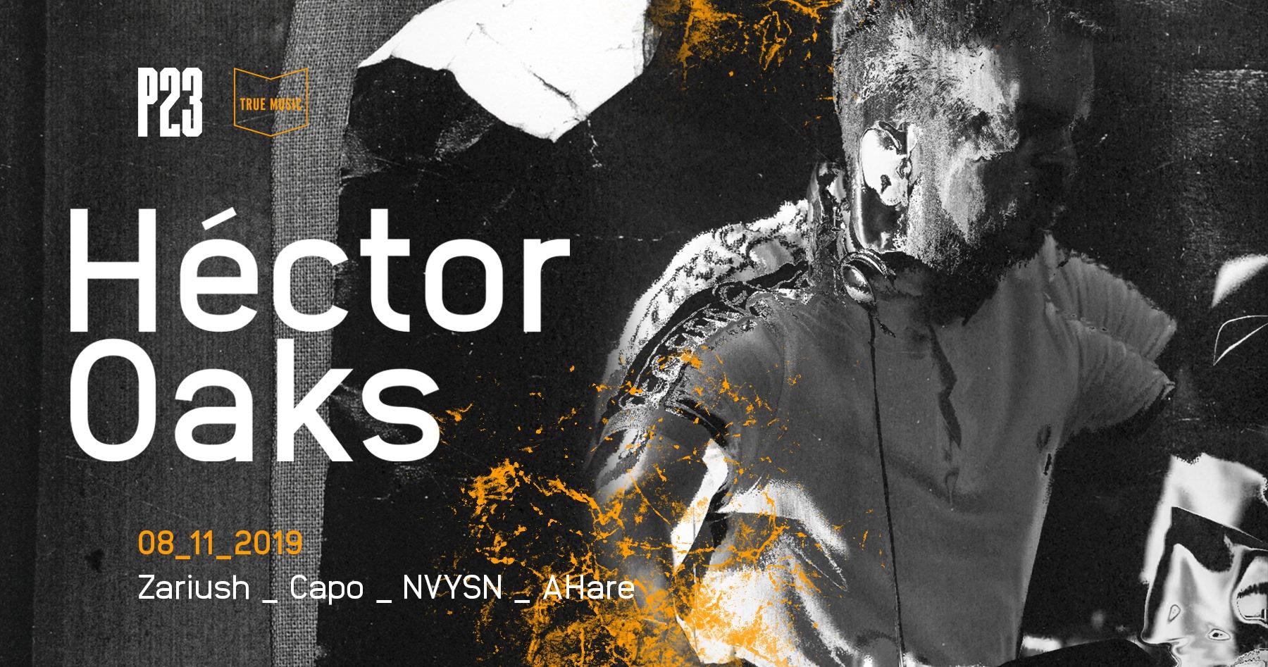hecktor aoks p23
