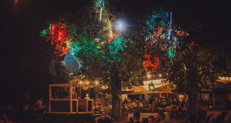 ZaTarg na Wildzie, Electronic Field Festival - trzy dni z techno w Poznaniu