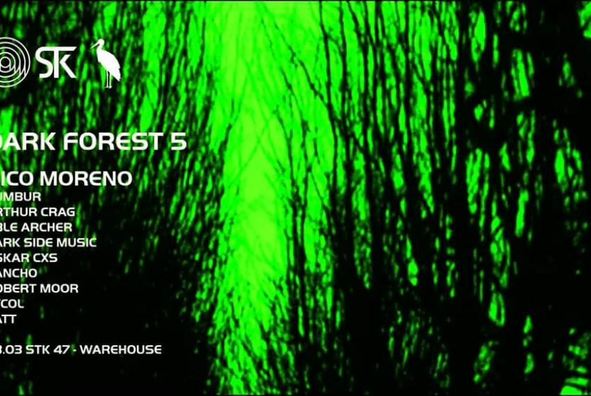 Dark Forest #5 w. Nico Moreno