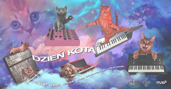 Tama celebruje Dzień Kota! Stream DJ setów będzie połączony ze zbiórką na rzecz zwierząt