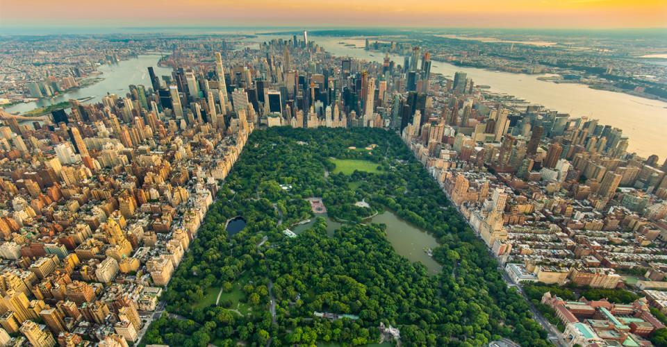 Central Park, Nowy Jork, Festiwal