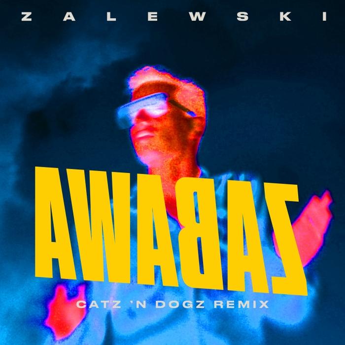 Catz 'n Dogz i Krzysztof Zalewski Zabawa Remix